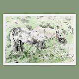 Obrazy - Mimikry - originál, velký akvarel - 10762999_