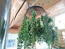 Dekorácie - veľký vešiak na bylinky, kvety... - 10768069_