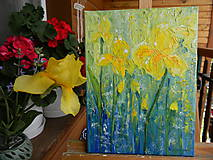 Obrazy - Yellow irises - 10771472_
