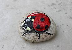 Dekorácie - kameň s lienkou - 10772761_