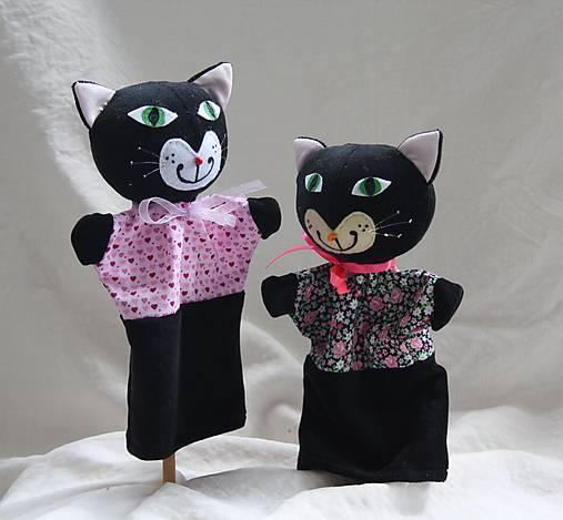 Čierne kozy a mačička