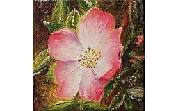 Obrazy - Divá ruža - 10769467_