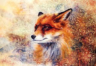 Obrazy - Obraz: Líška s ornamentálnym pozadím - 10771400_