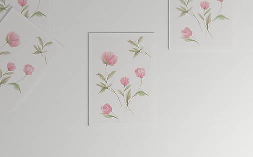 Akvarelový art print| botanická ilustrácia Pivonky