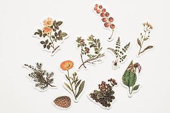 Papier - Akvarelové kvietky