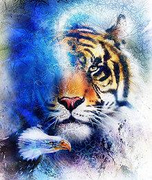 Obrazy - Obraz tigra s orlom s ornamentálnym pozadím - 10780125_
