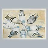 Obrazy - Kruh - originál, velký akvarel - 10782949_