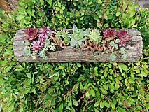 Nádoby - Drevený kvetináč - 10785671_