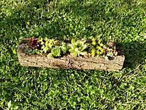 Nádoby - Drevený kvetináč - 10785674_
