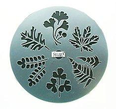Pomôcky/Nástroje - Plastová šablóna, 25 cm, listy, javor, dub, gingko, leaves - 10787973_
