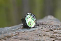 Prstene - paua - 10786419_