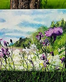 Obrazy - Wild meadow - 10792073_