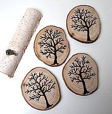 Pomôcky - Drevené podšálky-Stromy - 10796111_