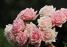 Iný materiál - Ruže ružové - 10795048_