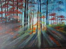 Obrazy - Prebúdzanie lesa - 10802072_