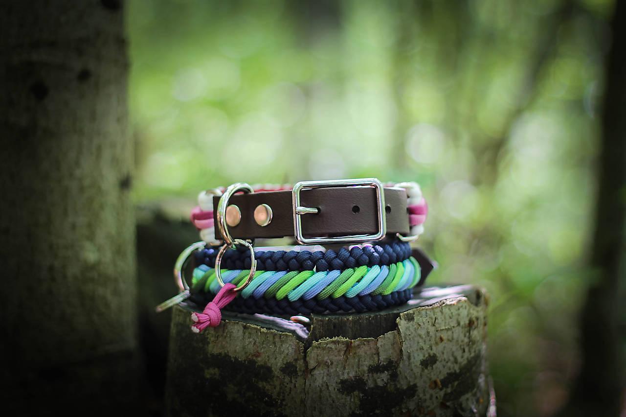 Pre zvieratká - Stripes with adapter  - 10802361_