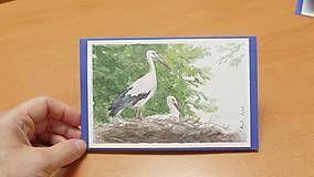 Papiernictvo - Ručne maľovaná pohladnica - Bociany 1 - 10805038_