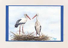 Papiernictvo - Ručne maľovaná pohladnica - Bociany 3 - 10805129_