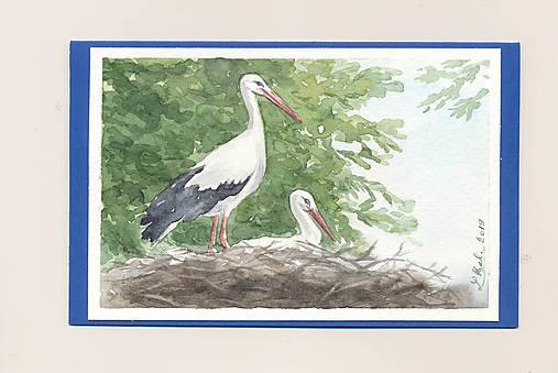 Ručne maľovaná pohladnica - Bociany 1