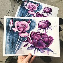 Obrazy - Ruža, pivónia - štúdie, (ART PRINT) akvarel - 10804120_