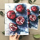 Obrazy - Granátové jablko, (ART PRINT) akvarel (A3 (30 x 42 cm)) - 10806159_
