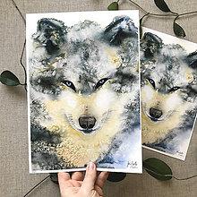 Obrazy - Vlk (hnedý), (ART PRINT) akvarel - 10806525_