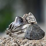 Prstene - Pre devu spod lesa - 10810664_