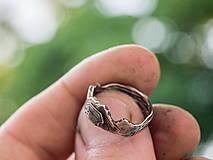 Prstene - Pre devu spod lesa - 10810665_