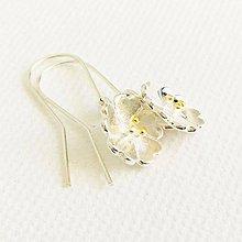 Náušnice - strieborno-zlaté nevädze, náušnice Ag 925 - 10809070_