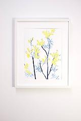 Obrazy - Reprodukcia akvarelu - Mimóza - 10815810_