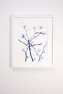 Obrazy - Reprodukcia akvarelu - Kvitnúce jabloňové halúzky - 10815821_