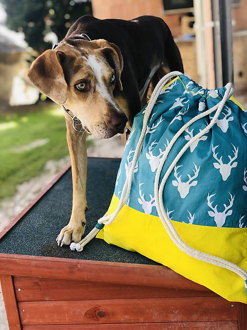 Tyrkysovo žltý zaťahovací batoh / Paroháč