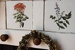 Nábytok - Vidiecka vešiak-o-polica biela - 10819472_
