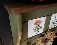 Nábytok - Vidiecka vešiak-o-polica olivová - 10825742_
