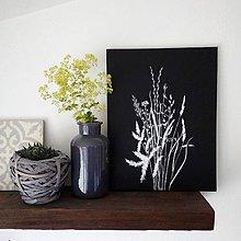 Obrazy - Obraz trávy na čiernom plátne - 10829413_