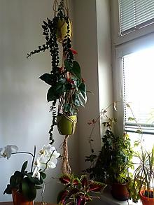 Dekorácie - Boho záves na kvetiny Geminy - 10831661_