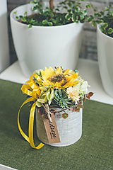 Dekorácie - Flowerbox - SLNEČNICA MINI - 10831369_