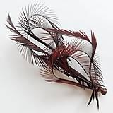 Fascinátor z peria