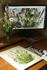 """Obrazy - Obraz """"Lúčne kvety"""", akvarel, tlač A4 - 10835221_"""