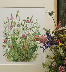 """Obrazy - Obraz """"Lúčne kvety"""", akvarel, tlač A4 - 10835178_"""