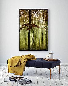 Obrazy - LES fotoplátno 60x80 cm - 10836317_