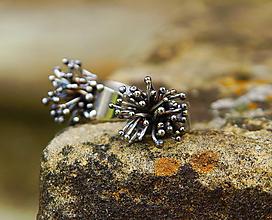 """Prstene - Partnerské prsteny """" Dandelion """" ..."""" You and I """" - 10836441_"""