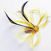 Ozdoby do vlasov - Fascinátor z peria - 10838750_