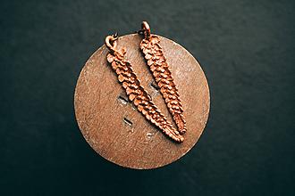 Náušnice - Náušnice papraď - 10841416_