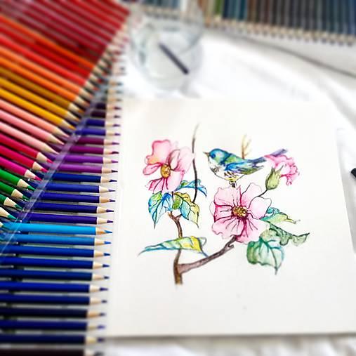Obrazy - Vo vanku - 10843439_