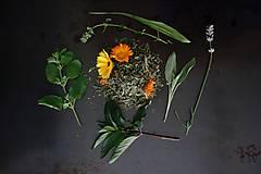čaj záhrada večného leta