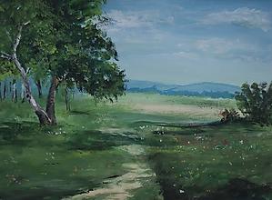 Obrazy - Cesta do lesa. - 10854973_