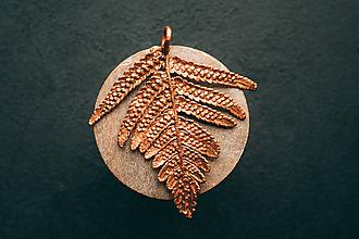 Náhrdelníky - Prívesok papraď - 10855517_