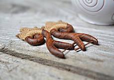 Náušnice - Drevené náušnice •Amazonky• - 10859316_