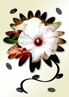 Grafika - Kvety v kvete (nevesta) - 10862302_